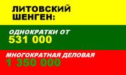 Однократная виза в Литву! Быстро и недорого!